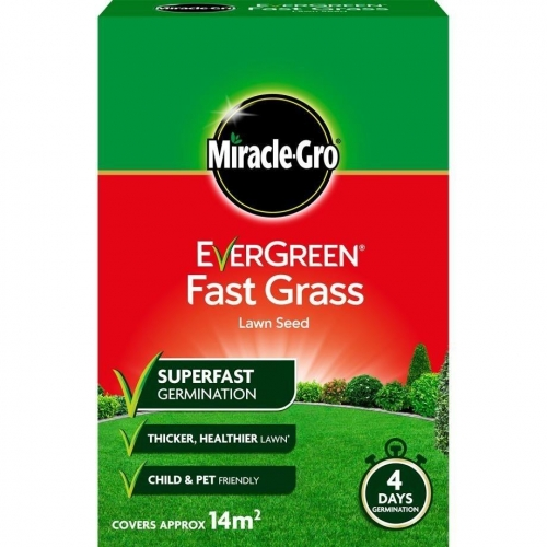 Evergreen Fast Grass Lawn Seed 480g